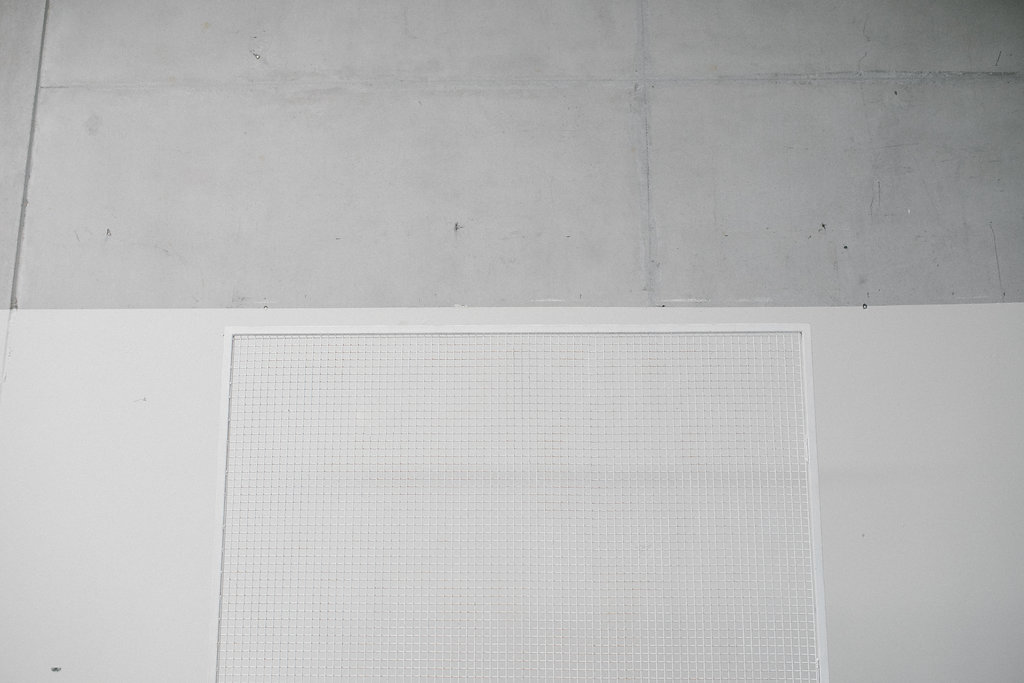 Two Foxes Wire Mesh Backdrop